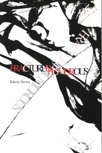 Edwin Torres Fractured Humurous