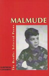 Stephen Malmude
