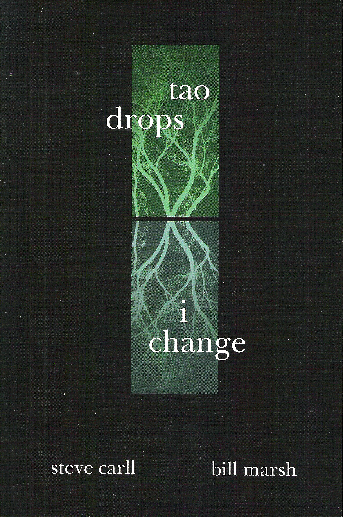 Tao Drops, I Change by Steve Carll and Bill Marsh